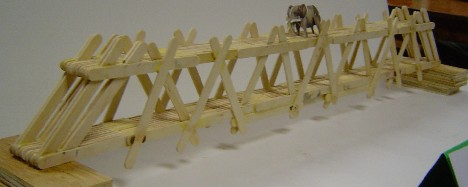 popsicle stick bridge photo